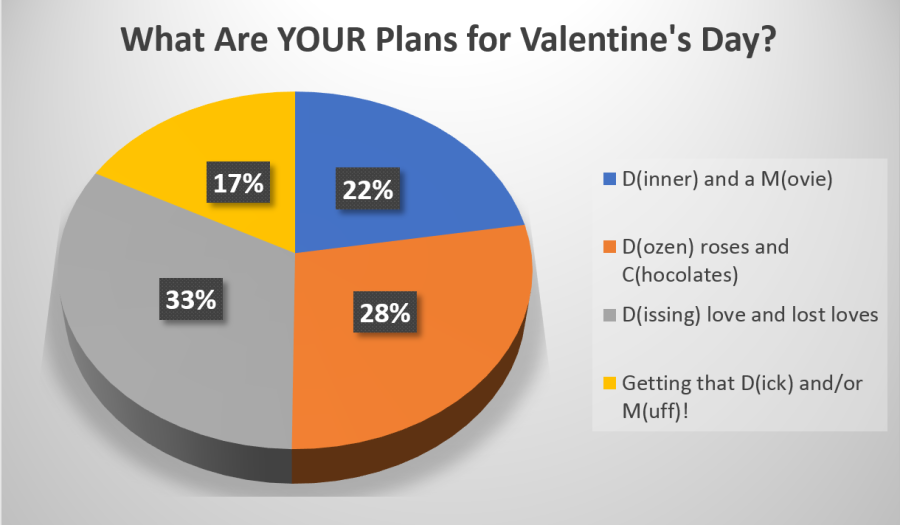 what-are-your-plans-for-valentines-day
